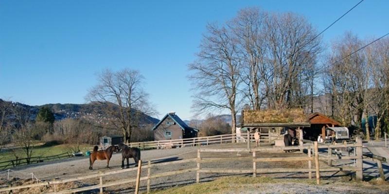 Bilde av Oppmerksomhet om gårdsdrift for Haraldsplass Diakonale Stiftelse